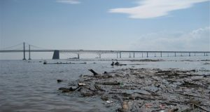 Debris floats in the Chesapeake Bay north of the Bay Bridge on Monday, Sept. 12, 2011 in Sandy Point State Park, Md. (AP Photo/Alex Dominguez)