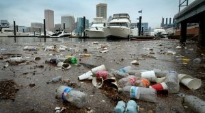 Study: Chesapeake cleanup would bring $22B boon