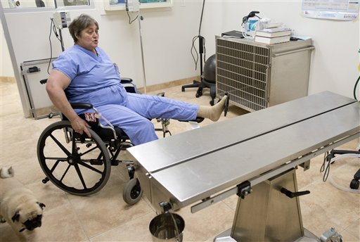 Wheelchair Doesn T Slow Veterinarian Down Maryland Daily