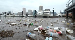 A mass of litter and debris float on the surface of the water on the south side of the Inner Harbor.