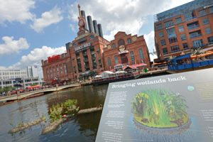 State approves revised wetlands fees for Inner Harbor restaurants