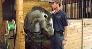 1a Retired Racehorse Training LMMF01_web