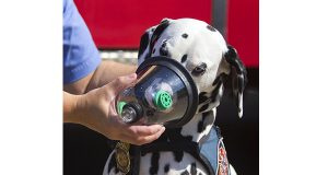 Deputy Fire Marshal, Amy Linder demonstrates the animal oxygen mask on her dog, Casey, the Official Fire Safety Dalmatian for the Eugene Springfield Fire Dept. (AP Photo/The Register-Guard, Alisha Jucevic)