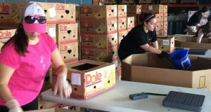 Cindy Loveless and Deanna Tevis, of Plan B Technologies Inc., pack 35-pound boxes of potatoes, prepping for distribution at End Hunger In Calvert County's FoodStock 2014.