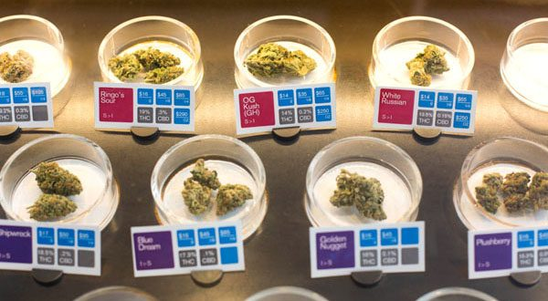 Cannabis buds with potency testing results are on display at a dispensary.  (Photo: Sonya Yruel/Drug Policy Alliance)