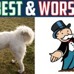 Good news for pet owners; Mr. Monopoly gets the boot