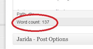 word count NEW