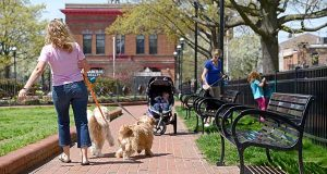 Dog walkers and mothers with strollers are seen walking in Canton Square on a nice day. (The Daily Record / Maximilian Franz)
