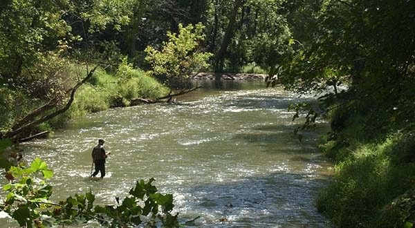 A Flyfisherman enjoying the late summer breeze while standing in the center of the Gunpowder River. (The Daily Record / Maximilian Franz)