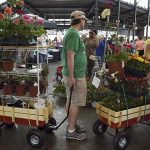 In this May 17, 2015 photo, Karl Bastian, of Traverse City, Mich., center, pulls a wagon full of plants with his daughter, Sophie Bastian, right, and his mother-in-law Theresa Perez, of Warren, Mich., left, during Flower Day at Eastern Market in Detroit. The Conference Board on Tuesday said consumer confidence rebounded this month as the job market showed signs of improvement. (Robin Buckson/Detroit News via AP)