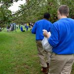Incarcerated youth maintain Md. orchard to help feed needy