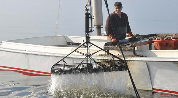 Jim Reihl watches on his deadrise workboat, the Mary Ann, as patent tongs come up from the bottom of Peach Orchard oyster bar near Rock Hall, Md. last year. Reihl has been a waterman in the area for more than three decades. (Capital News Service / Photo by Marc Castelli.)