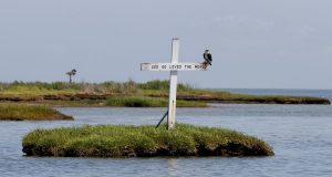 An Osprey sits atop a cross erected in the waterway leading to the harbor of Tangier Island, Va., in May 2012. Researchers say the 500 or so residents of Tangier Island could be forced to move in 50 years, as rising seas claim their island at an alarming rate. (Steve Helber/AP Photo)