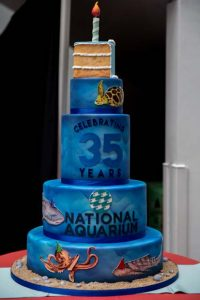 Baltimore's famous Charm City Cakes artists helped the National Aquarium celebrate its 35th anniversary by designing a cake featuring some of the aquarium's most recognizable animals. (National Aquarium photo)