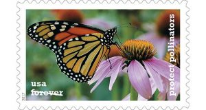 Karen Mayford of Glen Arm's photo is one of five used in the Protect Pollinators Forever stamps, which are non-denominational first-class postage aimed at raising awareness of pollinating insects.  (©2017 USPS)