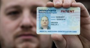 Phil Gruver poses for a photograph Jan. 10 with his Pennsylvania medical marijuana card in Emmaus, Pa. Gruver is weighing what to do with his .22-caliber rifle and a handgun he keeps for home defense. (Matt Rourke/AP Photo)