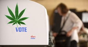 1a-marijuana-election-day-marijuana-mf09