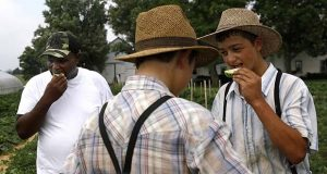 In this June 18, 2018 photo, James Chase, back left, shares slices of melon with sons belonging to an Old Order Mennonite family at the family's farm in New Holland, Pa. Over time, black Baltimore street vendors fighting to keep their anachronistic trade alive managed to forge an unlikely alliance with rural Pennsylvania's Mennonites - generally less austere cousins to the Amish - who serve as a sustaining link. (AP Photo/Patrick Semansky)