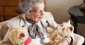 Ageless Innovation LLC's Joy For All line of companion pets are designed for older adults. (PRWeb photo)