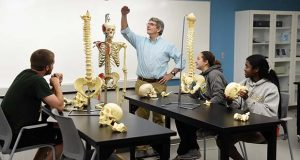 In this undated photo submitted by McDaniel College, a human anatomy and physiology lab is depicted. The college in Westminster is set to open a $6.6 million renovation of its Gill Center, which will house the college's kinesiology program along with the school's athletic teams. (Submitted photo)