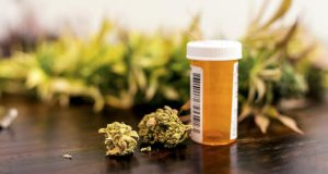 Marijuana buds sitting next to prescription medicine bottle