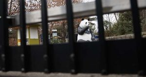 A panda statue is seen beyond the closed gate at Smithsonian's National Zoo, Wednesday, Jan. 2, 2019, in Washington. Smithsonian's National Zoo is closed due to the partial government shutdown. President Donald Trump is convening a border security briefing Wednesday for Democratic and Republican congressional leaders as a partial government shutdown over his demand for border wall funding entered its 12th day. (AP Photo/Carolyn Kaster)