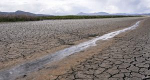 A small stream runs through the dried, cracked earth of a former wetland near Tulelake, California, on June 9, 2021. A federal judge has thrown out Trump-era rule that ended federal protections for hundreds of thousands of small streams, wetlands and other waterways across the country. (AP Photo/Nathan Howard, File)